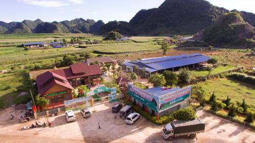 Thảo nguyên xanh Mộc Châu mê hoặc du khách