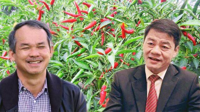 Tỷ phú Trần Bá Dương bỏ tỷ USD 'đỡ' Bầu Đức