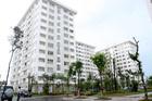 Không giảm lãi suất cho vay mua nhà ở xã hội trong năm 2020