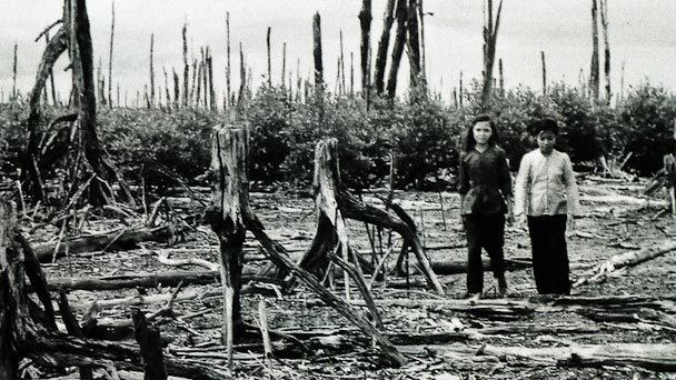chất độc da cam,dioxin,Mỹ,Việt Nam,chiến tranh Việt Nam,nạn nhân chất độc da cam