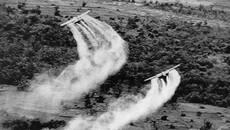 Ngày này năm xưa: Mỹ rải chất độc da cam ở Việt Nam