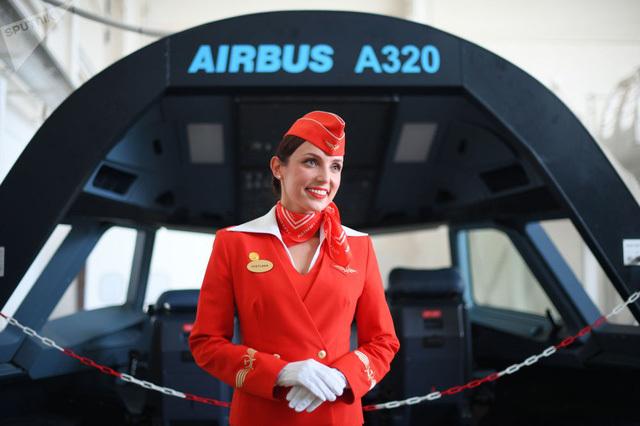 Tiếp viên hàng không,Máy bay