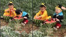 Cách ăn dưa mà đứa trẻ nào cũng mơ ước
