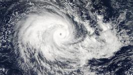 Công điện của Bộ TT&TT về việc chủ động ứng phó với bão số 4