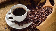 Giá cà phê hôm nay 16/8: Giảm tiếp 100 đồng/kg