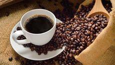 Giá cà phê hôm nay 24/9: Giá cà phê trong nước đứng yên