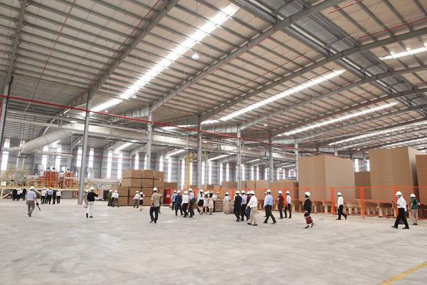 Kim Tín Group đầu tư nhà máy ván MDF 2.300 tỷ đồng