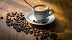 Giá cà phê hôm nay 7/9: Tăng 500 đồng/kg