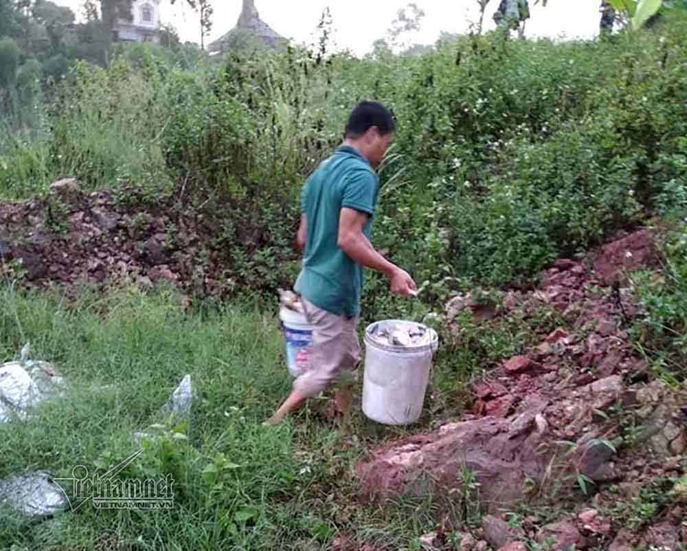 cá chết,Hà Nội,ô nhiễm