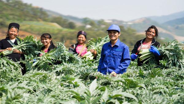 Nông dân đổi đời trên vùng cây dược liệu