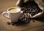 Giá cà phê hôm nay 22/8: Cà phê trong nước tăng nhẹ