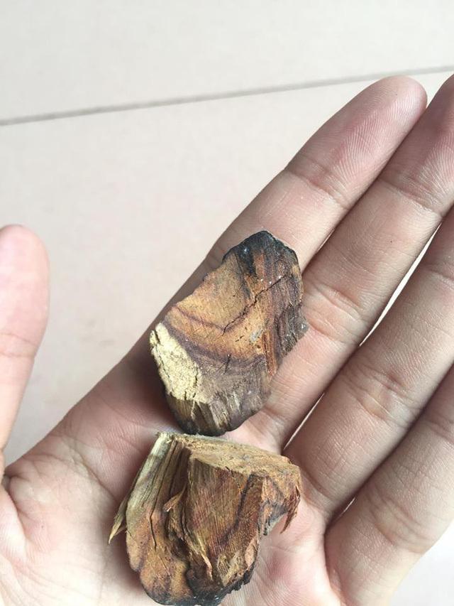 Đại gia 15 năm buôn gỗ sưa bị lừa mất trắng bạc tỷ