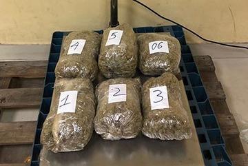57kg cần sa bị phát giác ở sân bay Tân Sơn Nhất
