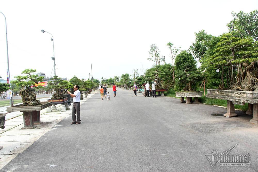Dân quê choáng ngợp với con đường siêu cây đình đám trăm tỷ
