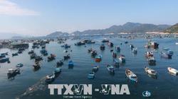 Chính sách biển phải giải quyết được vấn đề nội tại của đất nước