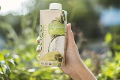 Betrimex tiên phong 'hữu cơ hóa' ngành dừa VN