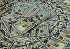 Tỷ giá ngoại tệ ngày 7/9: Căng thẳng toàn cầu, USD chững lại