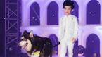 120 mẫu nhí trình diễn thời trang với thú cưng