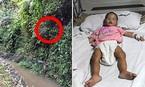 Bé hơn 1 tuổi sống sót sau gần một tuần lạc trong rừng