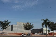 Cả thành phố Phan Rang mất ngủ vì một loài chim