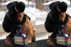 Cảm động trước hành động của chú chó không nỡ rời xa chủ nửa bước
