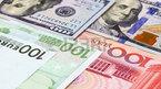 Tỷ giá ngoại tệ ngày 12/9: Sức ép lãi suất đẩy USD tăng vọt