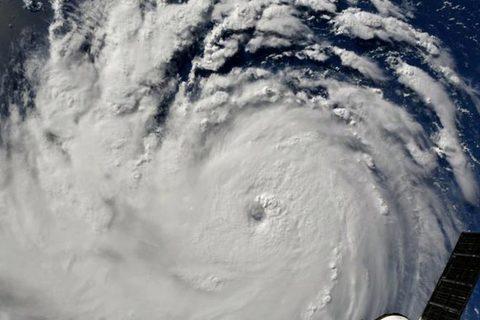 bão Florence