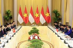 Chủ tịch nước Trần Đại Quang hội đàm với Tổng thống Indonesia