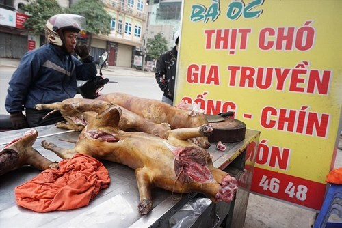 2021: Nội thành Hà Nội không còn bán thịt chó