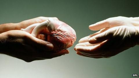 ung thư vú,hiến tạng
