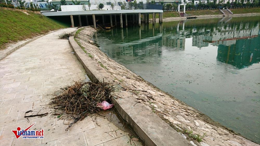 ô nhiễm môi trường,Hà Nội,Công viên Thanh Xuân