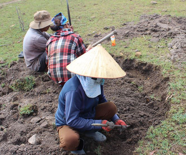 Phú Yên: Đổ xô đi đào loài đá đen lấp lánh dưới đáy hồ thủy điện