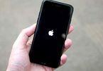 iOS 12 và macOS dính lỗi gây treo máy