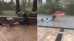 Video những hình ảnh kinh hoàng trong siêu bão Mangkhut gây sốc cư dân mạng
