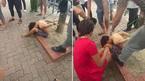 Triệu tập 3 người vụ bé trai bị trói vào gốc cây gần công viên Thống Nhất