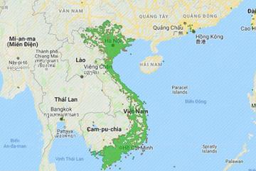 Việt Nam có thể học hỏi thế giới về cách triển khai 5G