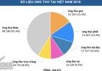 2018, Việt Nam đang ở đâu trên bản đồ ung thư thế giới?