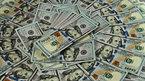 Tỷ giá ngoại tệ ngày 28/9: Nhận chìm Euro, USD lên đỉnh
