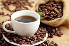 Giá cà phê hôm nay 9/11: Đảo chiều tăng giá 400 đồng/kg