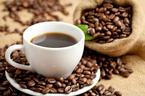 Giá cà phê hôm nay 1/10: Tăng 700 đồng/kg