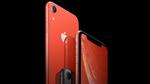 Apple đổi nhà máy sản xuất iPhone Xr do năng lực hạn chế