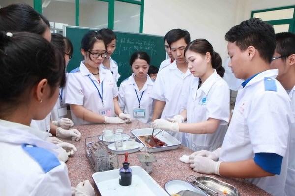 Thành lập Trường ĐH Y dược Cà Mau