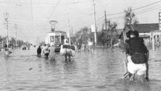 Ngày này năm xưa: Siêu bão chết chóc tấn công Nhật