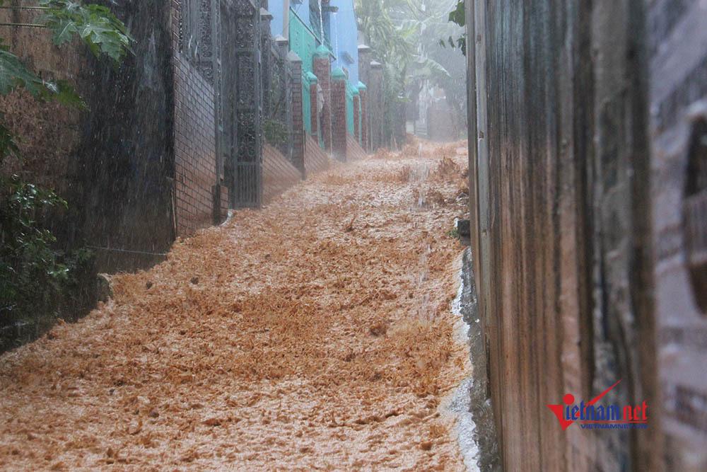 Mưa 30 phút, dân phố Hạ Long ì ạch lội bùn