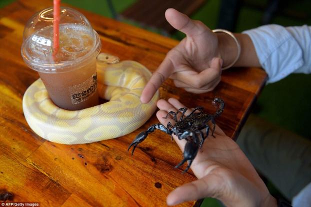 cà phê độc lạ,quán cà phê