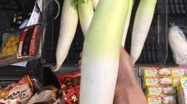 Bỏ 10 triệu đồng mua củ cải khổng lồ: Chế đủ món ăn dần