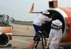 Máy bay hoãn chuyến vì hàng vạn con ong bám trên động cơ