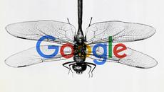 Nhân viên nghỉ việc, tố Google thông đồng với chính quyền Trung Quốc