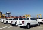 Doanh số xe bán tải sụt giảm: Hết thời bị 'hất cẳng' hay bị đe nẹt thuế phí?