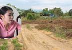 Vụ tố xẻ đất rừng bán tiền tỷ: Chính quyền bất ngờ báo mất hồ sơ gốc